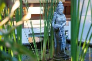 8_Siddhartha_Oceanfront-Resort_Lilly-Pond
